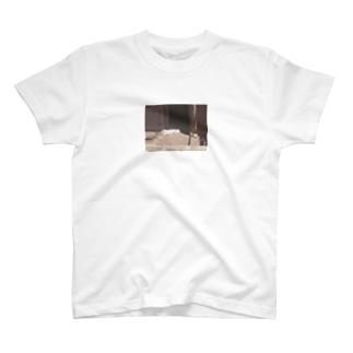 スヤスヤうさちゃん T-shirts