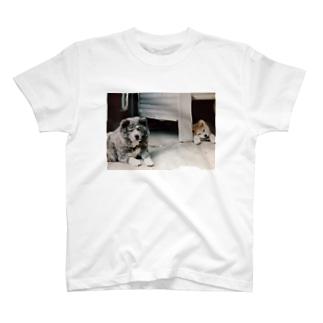 ごまちゃんとたろうくん T-shirts