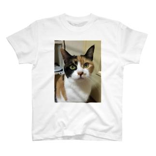 みぃさん T-shirts