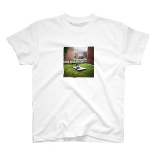美術館の傘 T-shirts