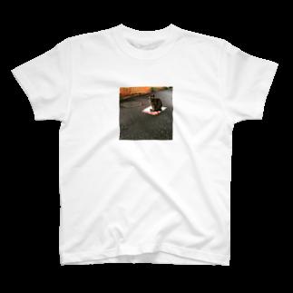hari1111の道端の猫 T-shirts