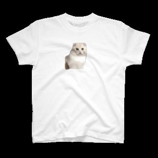 hha__m72のねこ T-shirts
