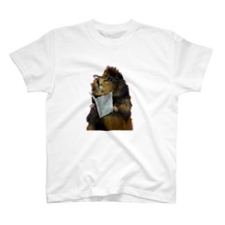 ガリ勉まっちゃ T-shirts