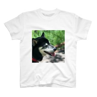 夏の黒柴 T-shirts