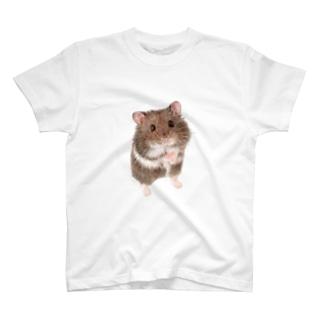 キャンベルハムスター T-shirts
