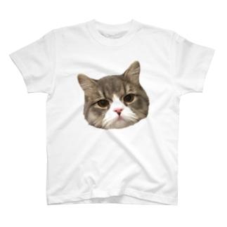 ハチワレ キャットフェイス T-shirts