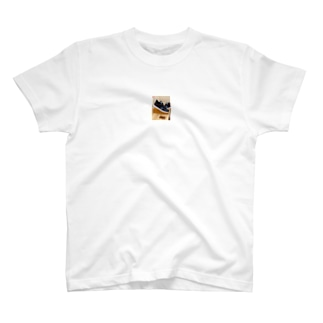 カジュアルシューズ  T-shirts