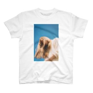気流 T-shirts