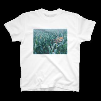 mn_369の穀物 T-shirts