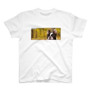 テンクロphotoT001 T-shirts