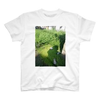 野招猫 T-shirts