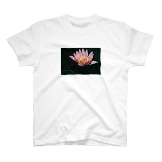 蓮子 T-shirts