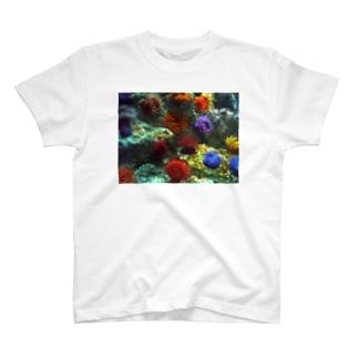 イソギンチャク T-shirts