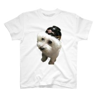 doggy004 T-shirts