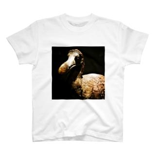 ドードー T-shirts