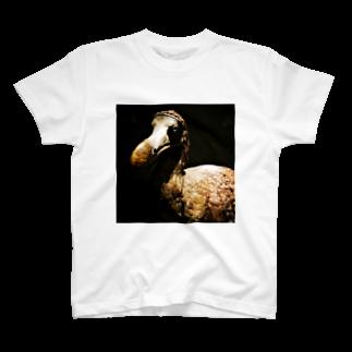 preppのドードー T-shirts