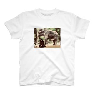 牛女しらすと象 T-shirts