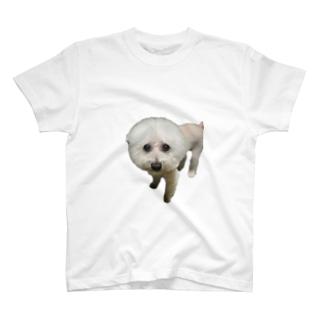 doggy010 T-shirts