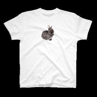 ヒラノマキコの2015.11月うさぎ T-shirts