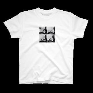 anatoinの4面ねもち T-shirts