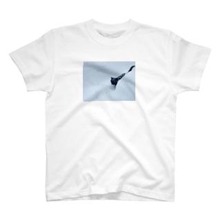 雪猫 T-shirts