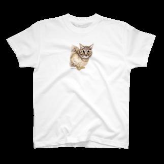ヒラノマキコの20180.04月ねこ T-shirts
