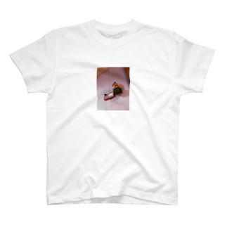 Nerokunの二酸化炭素とスズメの危険 T-shirts