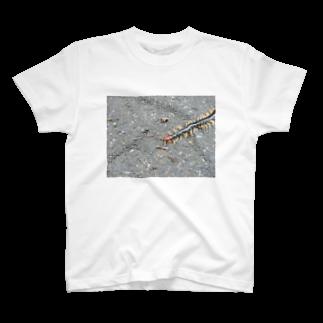 うぃーとの百足 T-shirts