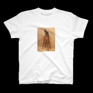 和智弁のひめ T-shirts