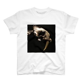 サーベルタイガー T-shirts
