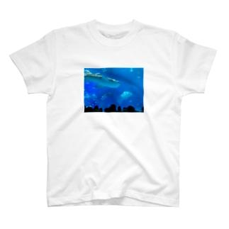 ジンベイザメの写真 T-shirts