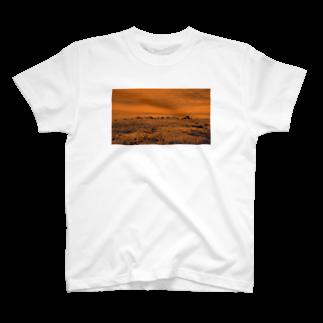 FahrenheitのRock orange T-shirts