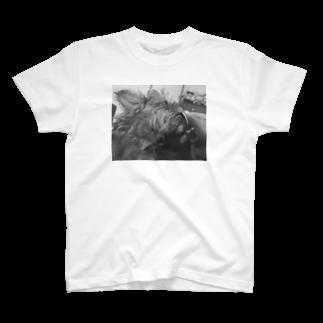 ch0mmmの愛犬 T-shirts