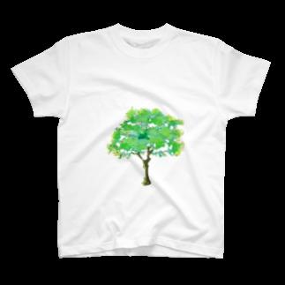 石川 佳宗の樹木3 T-shirts