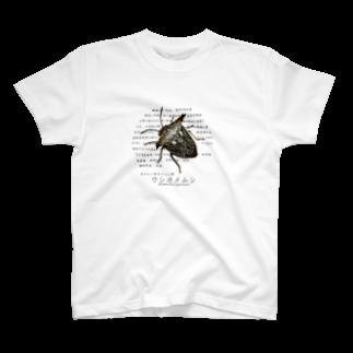 Hu_Loのウシカメムシ T-shirts