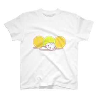 うさころと柑橘フルーツ T-shirts