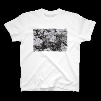 kio photo worksのflowers  T-shirts