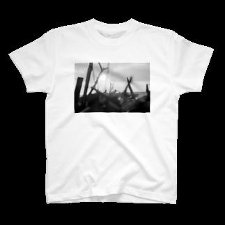 kio photo worksのEvening sea light T-shirts