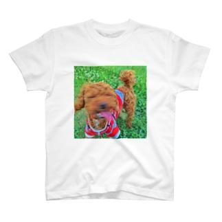 可愛く撮って! T-shirts
