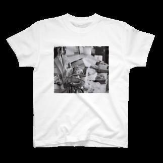 kio photo worksのcat in bicycle T-shirts