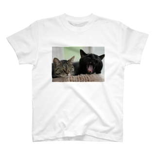 ヴィヴィ&はな T-shirts