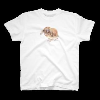 ヒラノマキコの2016.02月うさぎ T-shirts