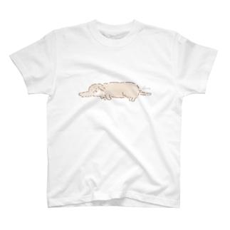 ちょこたんだっくす(ねそべり) T-shirts
