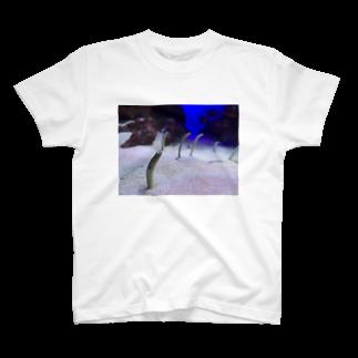 aonananaseのひょっこりちんあなご T-shirts