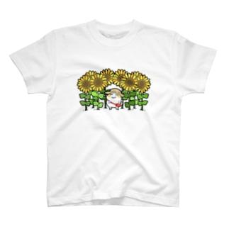 ひまわり畑とまっちろ T-shirts