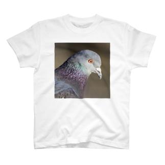 可愛い鳩 T-shirts