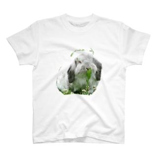 大福1 T-shirts