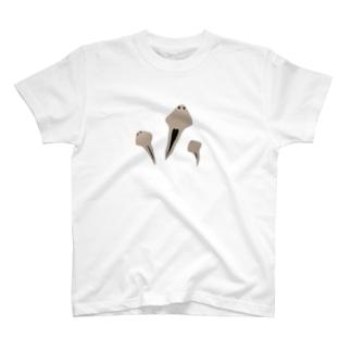 プラナリア T-shirts