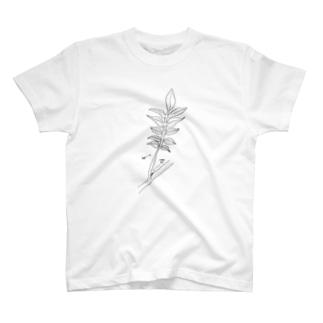 草 T-shirts