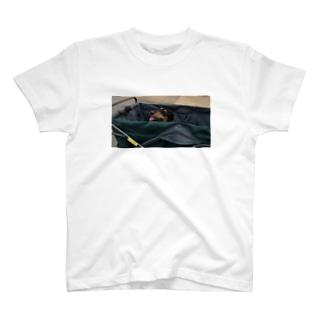 イヌもナツバテ T-shirts